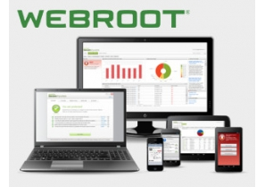Offre MSP webroot - IPsteel France